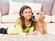 girl and dog landing page resize